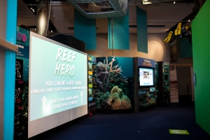 Photograph of Reef Hero activity