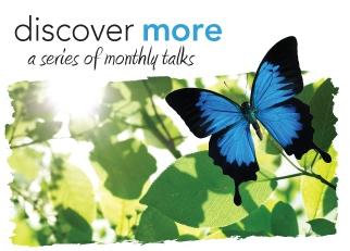 Discover More Talk - June